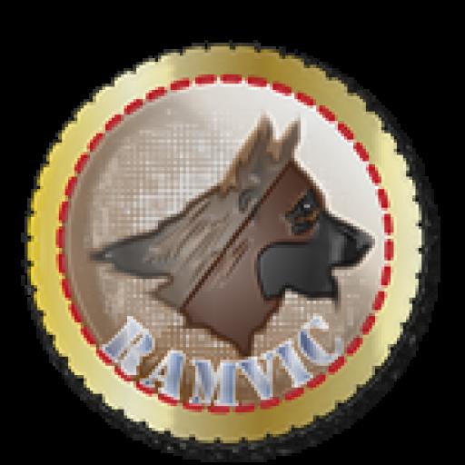 venta,cachorros,pastor alemán,campeones,perros,pedigree,españa,camadas,