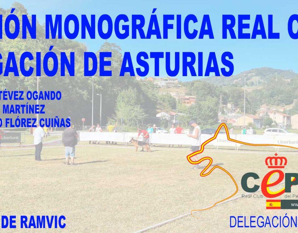 Exposicion monografico real ceppa delegacion de Asturias 2021