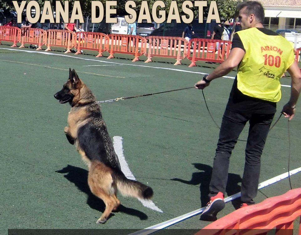 Monográfica Comunidad de Valencia 2021 Yoana de Sagasta